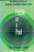 Pebble in a Pool