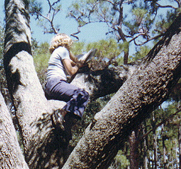 Laura Purdie Salas, reading in a tree