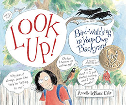Look Up! Bird Watching in Your Own Backyard