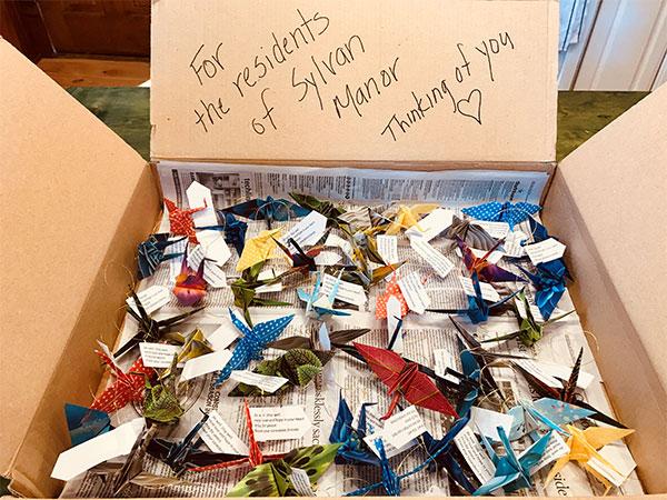 A Box of Peace Cranes