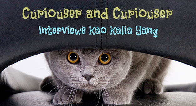 Curiouser and Curiouser with Kao Kalia Yang