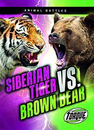 Siberian Tiger vs Brown Bear